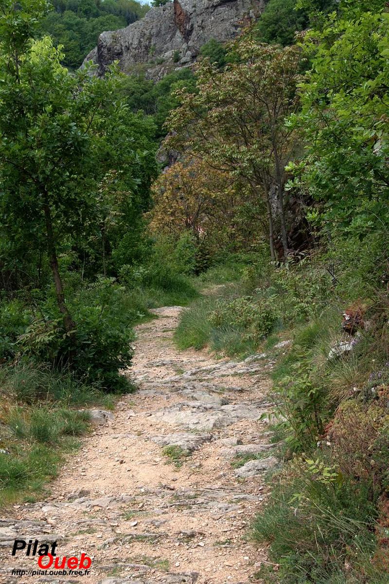 Petit sentier en dessous de Véranne